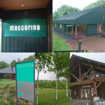 Maccarina01